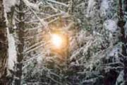 Шаровая молния: сущность из параллельного мира