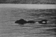 50 лет назад в озере Лох-Несс точно обитало какое-то чудовище