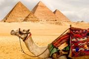 Воины египетских гробниц