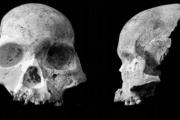 В Китае найдены останки абсолютно нового вида человека