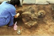 В гробнице китайского императора нашли терракотовую армию