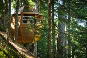 Дом на дереве – мечта экстремала, или выживальщика