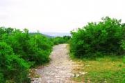 Календская тропа – военная римская дорога в Крыму