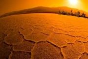 Украина: Нынешняя жара побила все рекорды последних 10 лет