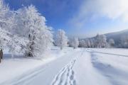 Снег. Занимательные факты