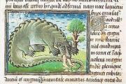 Когда погибли последние дикие крокодилы на Руси?