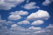 Бактерии с комфортом летают в облаках