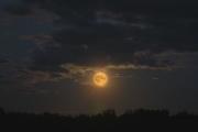 Луна: визуальный обман. В чём секрет?