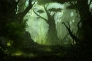 Берегите тропические леса: они правят ветрами